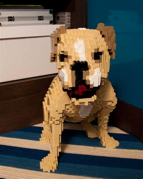 lego dog house spotted lego dog dog milk