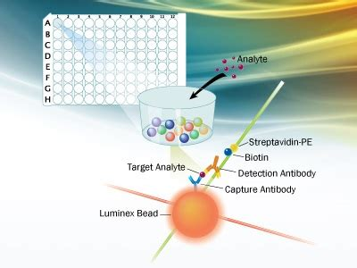 luminex high performance assays from r d systems