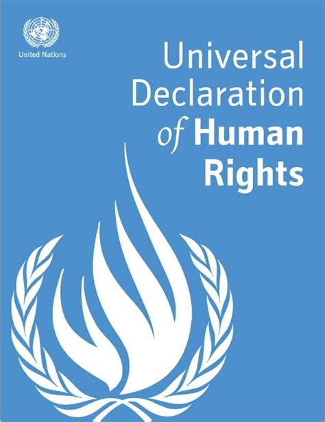 Universal Declaration Of Human Rights Essay by Universal Declaration Of Human Rights Essay Due December 6th Le Flambeau Foundation