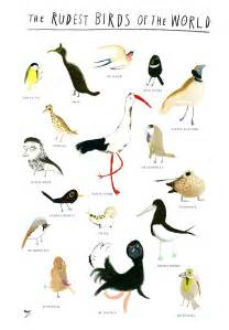 zebedee helm 187 rude bird names