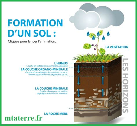 Le De Sol by La Transformation De La Mati 232 Re Par Les 234 Tres Vivants