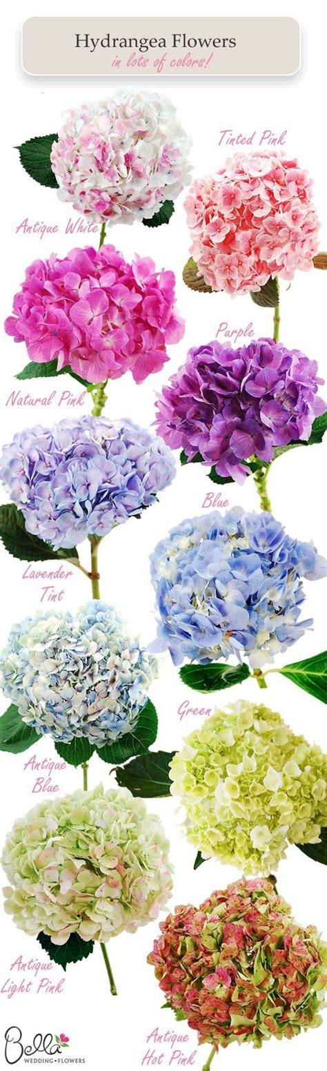 25 best ideas about purple hydrangea bouquet on pinterest purple hydrangea wedding hydrangea