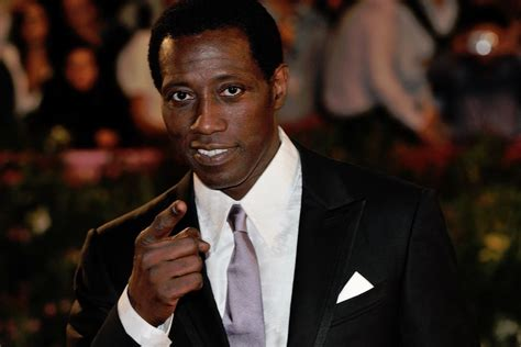 Wesley Snipes Reaches Settlement On Tax Charges by How Wesley Snipes Went From Passenger 57 To Prisoner
