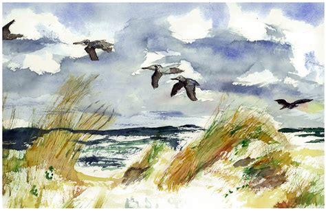 painting the sea people and birds with watercolor basics sea bird paintings mafiamedia