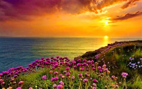 golden shine orange sky sunset sea ocean coast  purple