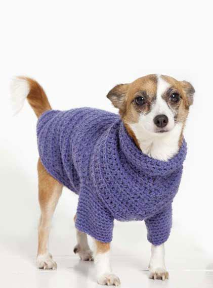 free easy knitting patterns for dog coats uk how to knit knitting patterns for beginners woman s weekly