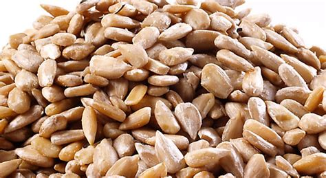 how to eat shelled sunflower seeds