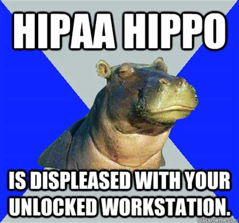 Skeptical Hippo Meme - hipaa hippo is displeased with your unlocked workstation