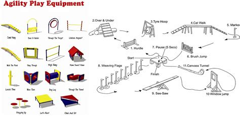 how to a for agility competition sport agility ibiyaya