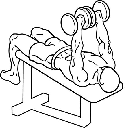 how to do bench press with dumbbells decline dumbbell bench press learn how to do this lower chest exercise