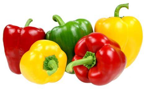 pilihan sayuran  diet  ampuh membakar kalori