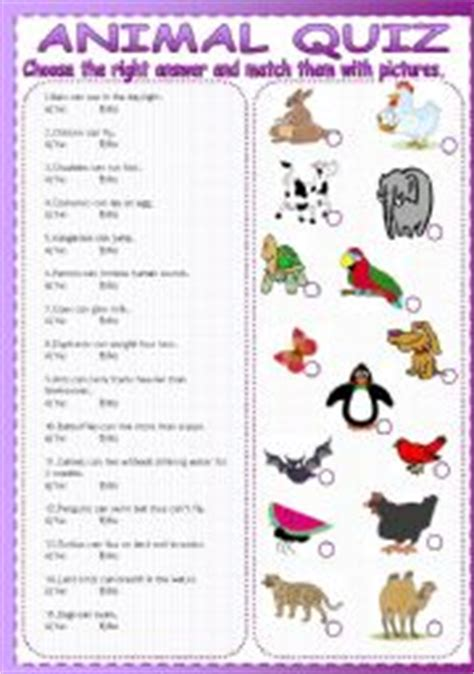 printable what animal are you quiz esl worksheets for beginners animal quiz