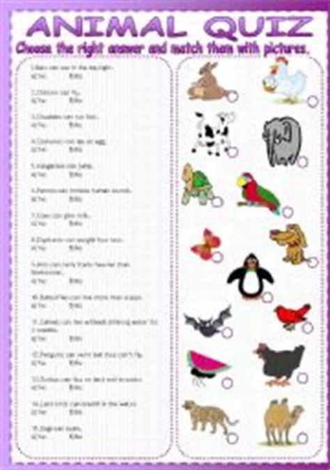 animal quiz esl worksheets for beginners animal quiz
