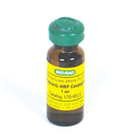 s protein hrp conjugate タンパク質 g hrp 複合体 1706425 ライフサイエンス bio rad
