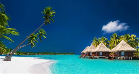south pacific tahiti yacht charter and fiji yacht vacation in the south