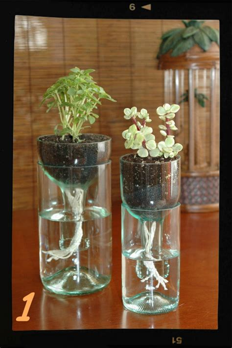 Wine Glass Holder Chandelier Tu Huerto Urbano Con Riego Automatizado