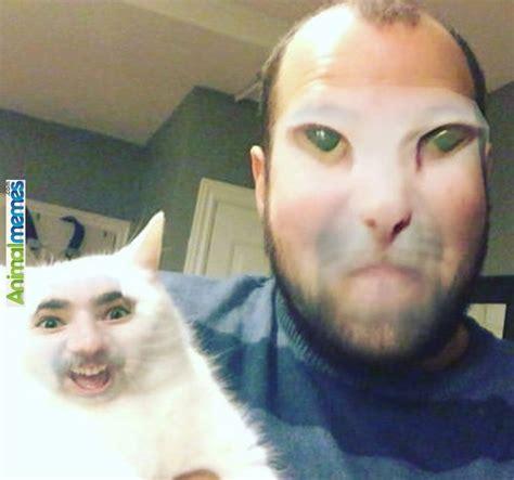 Cat Alien Meme - 919 best images about cat memes on pinterest