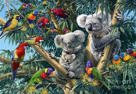 Butterflies Home Decor Koala Outback Digital Art By Steve Read