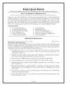 resume sles executive sales resume writing services