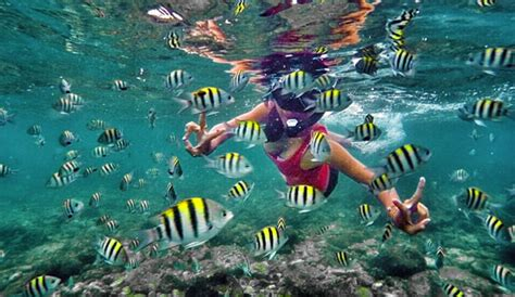 snorkeling pantai sadranan jogja bersahabat dgn ombak laut