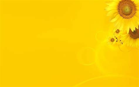 themes yellow desktop background yellow background wallpaper hd
