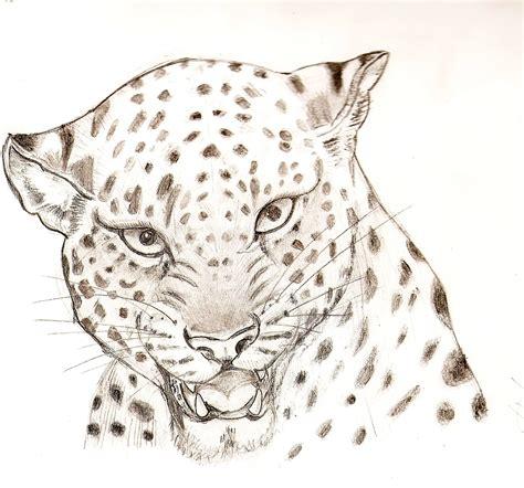 dibujos realistas animales dibujo para 237 sos surrealistas y otros lugares y seres