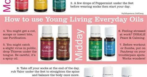 google images young living essential oils young living essential oils for negativity google search