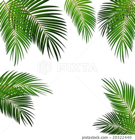Wallpaper Daun Palma | palm leaf vector background illustration stock