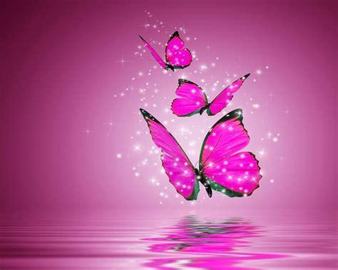 Imagenes Wallpapers Mariposas | banco de imagenes y fotos gratis wallpapers de mariposas 5