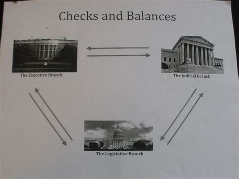 Federal Government Background Check Checks And Balances Blank Chart Pictures To Pin On Thepinsta