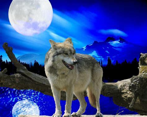 imagenes goticas de lobos 301 moved permanently