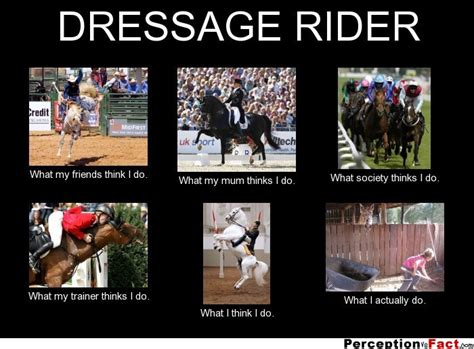 What I Do Meme - dressage rider what people think i do what i really