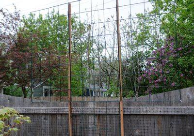 12 Foot Trellis Garden Grids For Trellises Trellis For Clematis