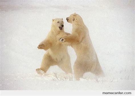 Dancing Polar Bear Meme - dancing polar bears by ben meme center