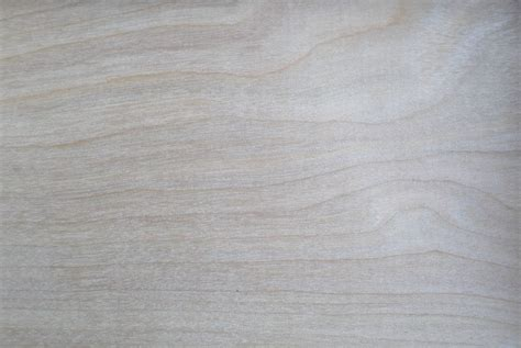 grey neutral wallpaper neutral backgrounds 183