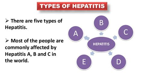 hepatitis c links best on the web hepatitis c new drug types and causes of hepatitis 187 hepatitis a b c d e f g