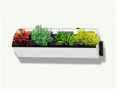 modern indoor planters self watering indoor planters 30 indoor herb pots and planters to add flavor to any home