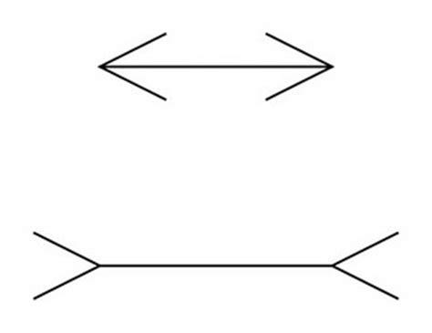 ilusiones opticas con explicacion 10 ilusiones 243 pticas y su explicaci 243 npichicola net