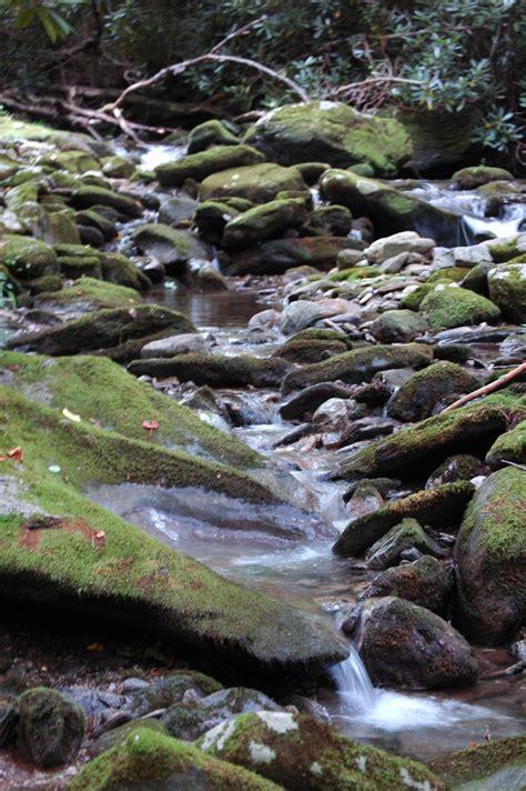 Landscape Creek Creek Beds On Creek Bed Creek And