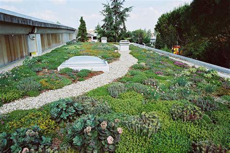 tetti giardino il tetto giardino 2