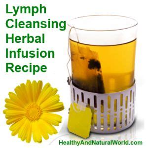 Detox Teas For Edema by 103 Best Images About Lymphatic System On