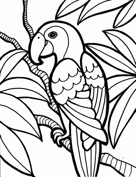 parrot coloring page bird coloring pages coloring pages to print