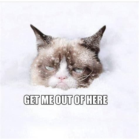 Hate Snow Meme - i hate winter 171 blueollie