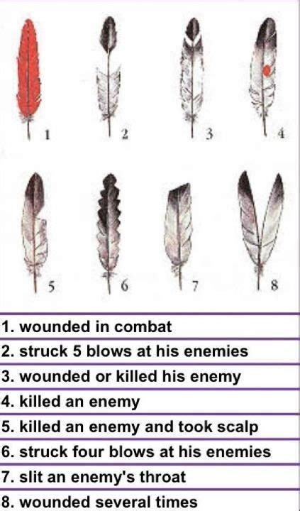 hair of the meaning american counting coup a practice of the great plains traditional healing