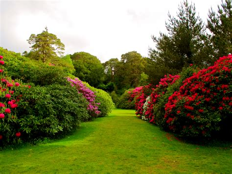 beautiful gardens muckross estate proverbs 23 4 5 beautiful gardens
