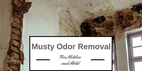 bedroom smells musty smells musty best musty odor removal solutions for mold and mildew on