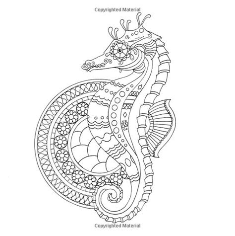 advanced ocean coloring pages seahorse ocean underwater sea coloring pages colouring