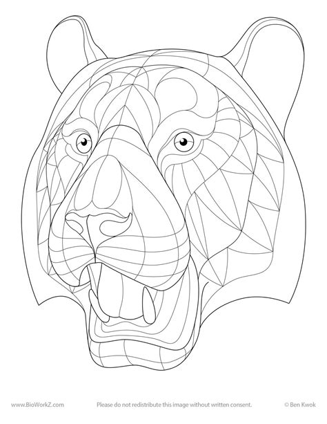 animal templates for zentangle zentangled colouring pages random ramblings of celeena cree