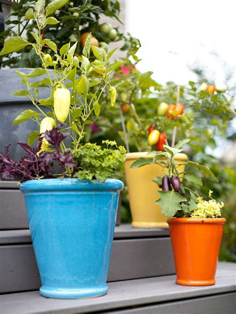 Vegetables In Containers Gardening Fresh Ideas For Growing Vegetables In Containers