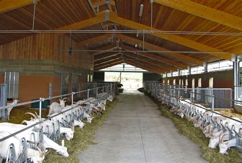 capannoni agricoli in legno capannoni prefabbricati in legno lamellare 12 miglioranza